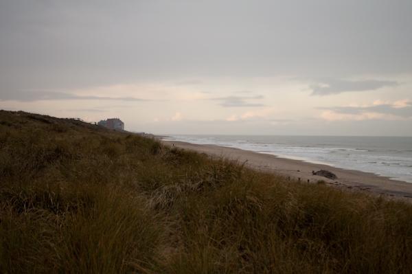 dunes2
