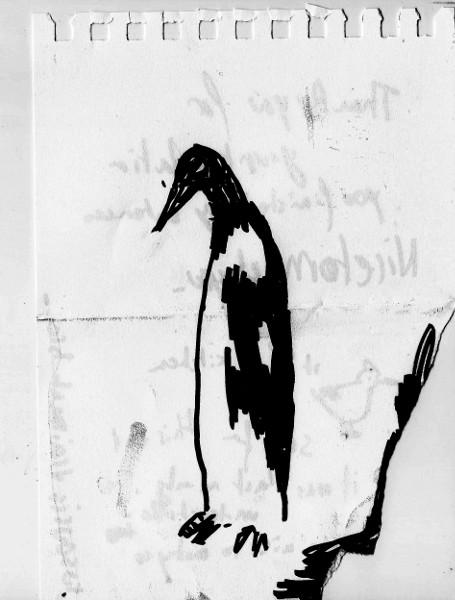 pinguin_net