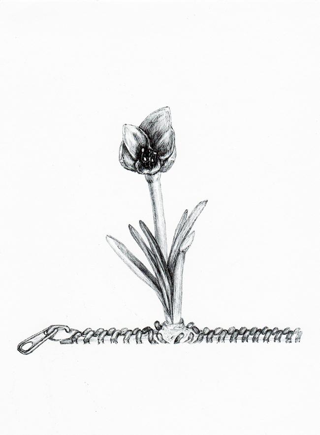 fleurzipcom_kun